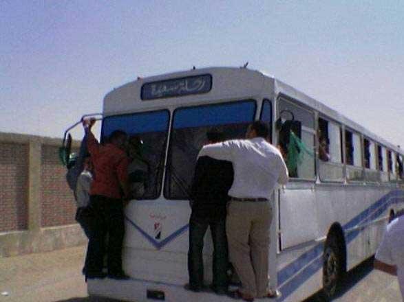 استراحة-egyptian_bus.jpg